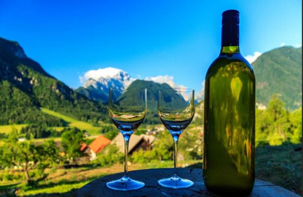 Croatia Wine